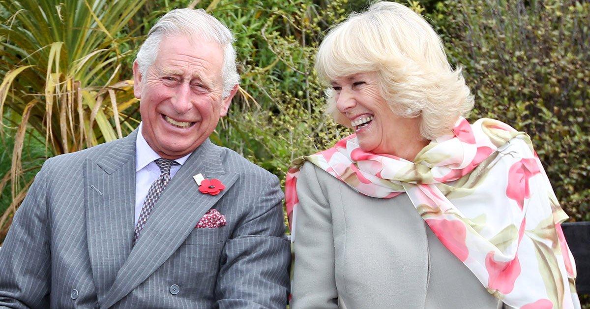 Истории знакомства членов королевской семьи
