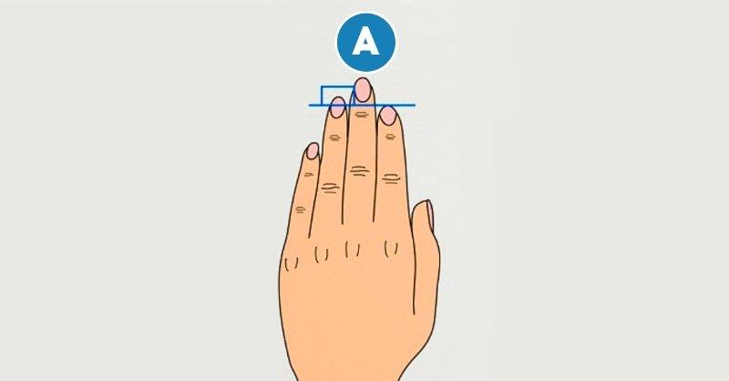 Длина пальцев расскажет о тебе всё! Самый правдивый тест за 2 минуты